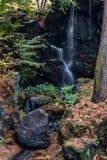 Waterfall garden maple trees in autumn season Stock Photo