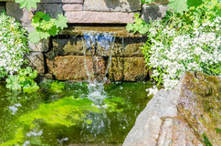 Waterfall, garden pond. Overlooking a small waterfall and garden pond Royalty Free Stock Photo