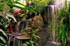 Waterfall in the garden Stock Image