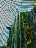 Waterfall in The Gardens. A a very high waterfall in Gardens By The Bay, Singapore Royalty Free Stock Photo