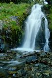 Waterfall in the Gifford Pinchot Wilderness Royalty Free Stock Images