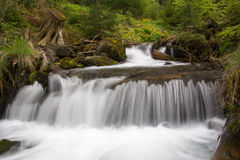 Waterfall girlish tears. In the Carpation mountains Stock Photos