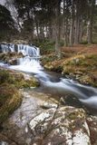 Waterfall at Glen Feshie in the Cairngorms National Park of Scotland. Waterfall and Forest at Glen Feshie in the Cairngorms National Park of Scotland Royalty Free Stock Photo