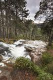 Waterfall at Glen Feshie in the Cairngorms National Park of Scotland. Waterfall and Forest at Glen Feshie in the Cairngorms National Park of Scotland Royalty Free Stock Images