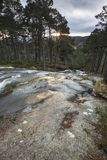 Waterfall at Glen Feshie in the Cairngorms National Park of Scotland. Waterfall and Forest at Glen Feshie in the Cairngorms National Park of Scotland Stock Photography