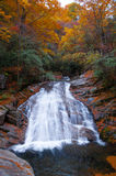 Waterfall and golden fall forest Stock Photos