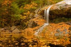 Waterfall on golden pond stock photo
