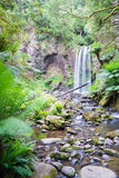 Waterfall in the Great Otway National Park in Victoria, Australia Royalty Free Stock Photography