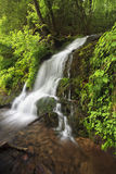 Waterfall, The Great Smoky Mountains National Park Stock Photography
