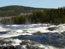 Fast flowing river with rapids Stock Photography