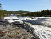 Wide river with rapids Stock Images