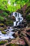 Waterfall in the green forest Royalty Free Stock Images