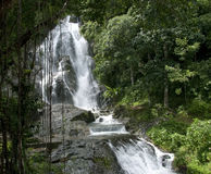 Waterfall  and Green Forest in Rainy Season Stock Image
