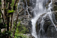 Waterfall  and Green Forest in Rainy Season Stock Images