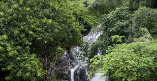 Waterfall  and Green Forest in Rainy Season Stock Photo