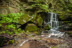 Waterfall in Green Forest Royalty Free Stock Photography