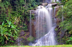 Waterfall. In green forest in Thailand Stock Image