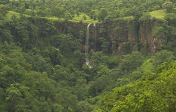 Waterfall in the Green Indian Forest. A Waterfall  during monsoon months in the Deciduous Forest of India. These Deciduous Forests remains green for about 6-7 Stock Photo
