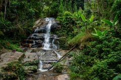 Waterfall in green jungle tropical forest. Beautiful stream waterfall run on the rocks in the tropical jungle green forest. Scenic water fall between greenery stock images