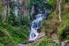 Waterfall in green jungle tropical forest Stock Photography