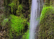 Waterfall and green moss. In the forest Stock Photos