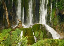 Waterfall and green moss. Stock Photography
