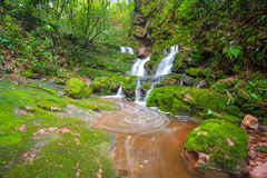 Waterfall with green moss. Stock Photos