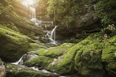 Waterfall with green moss in rain forest at Phu Soi Dao National. Park in Uttaradit, Thailand Royalty Free Stock Photography