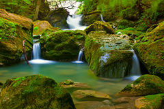 Waterfall in green nature Stock Photography