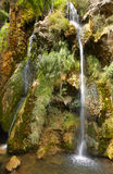 Waterfall with green plants and flowers in Spain Royalty Free Stock Photo