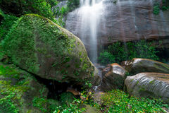 Waterfall in green rainforest Royalty Free Stock Images