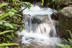 Waterfall and green stream in the forest Thailand Stock Photo