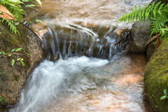 Waterfall and green stream in the forest Thailand Stock Images