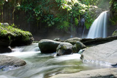 Waterfall in Guadeloupe Island surrounded by rocks Royalty Free Stock Photos