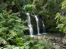 Waterfall on Hana Highway Maui Hawaii. One of the many waterfalls on the famous and picturesque Hana Highway, with lush vegetation and steep mountains. Tourists Royalty Free Stock Image