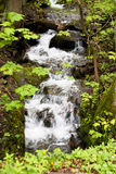 Waterfall in Harz Mountains Royalty Free Stock Photos