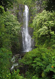 Waterfall (Hawaii) Stock Photos