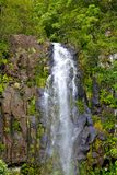 Waterfall in Hawaii Royalty Free Stock Image