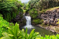 Waterfall on Hawaii. Beautiful tropical waterfall in Hawaii Royalty Free Stock Image