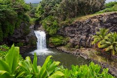 Waterfall on Hawaii. Beautiful tropical waterfall in Hawaii Stock Photography