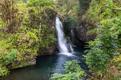 Waterfall on Hawaii. Beautiful tropical waterfall in Hawaii Stock Photos