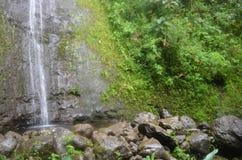 Waterfall in Hawaiian island stock photo