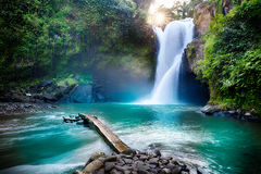 Waterfall hidden in the tropical jungle, Indonesia Stock Photography