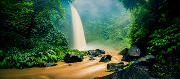Waterfall hidden in the tropical jungle Stock Photos