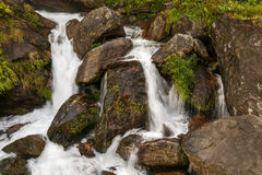 Waterfall in Himalayas Stock Photography