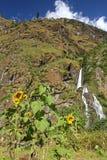 Waterfall in Himalayas Royalty Free Stock Photo