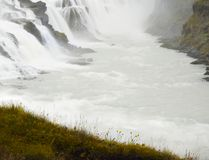 Waterfall Iceland  Gullfoss. View from a cliff with yellow flowers to a beautiful raging waterfall. Iceland, the waterfall Gullfoss Royalty Free Stock Photo
