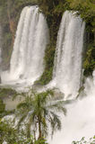 Waterfall Iguacu Royalty Free Stock Photo