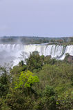 Waterfall Iguacu Royalty Free Stock Image