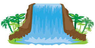 Waterfall illustration. Cartoon tropical waterfall illustration on white background Royalty Free Stock Photos